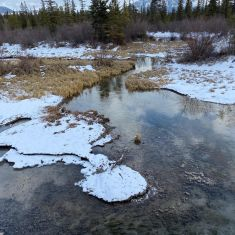 The headwaters. Canal Flats - Larry Halverson